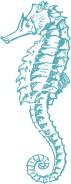Sea-Horse-Clip-Art-GraphicsFairy-aq-394x1024.jpg